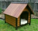 Rumah Anjing dari Kayu Jati