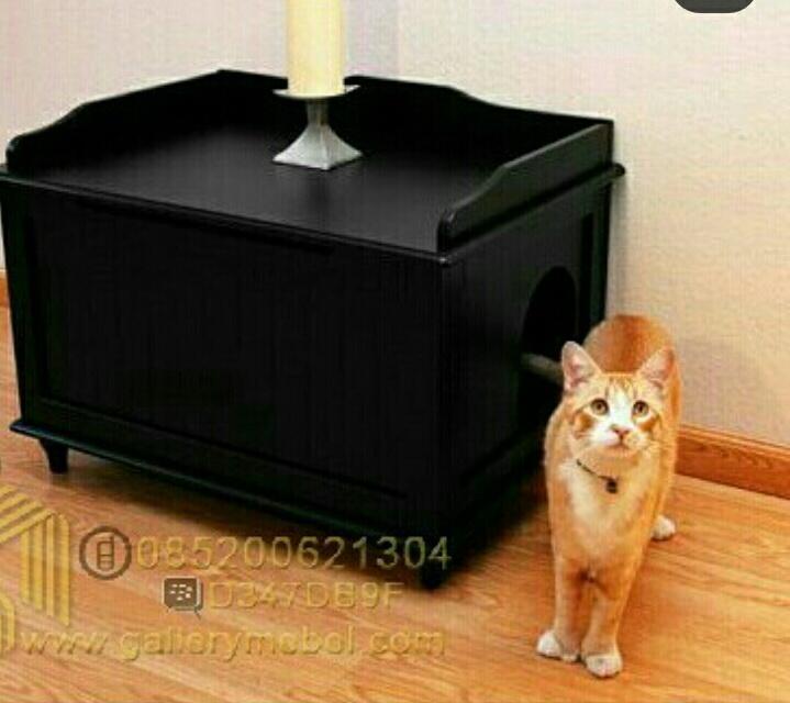 Rumah Kucing Lucu Minimalis,Rumah Kucing Lucu,Rumah Kucing Minimalis,Rumah Kucing Minimalis Lucu,Rumah Kucing,Rumah Tidur Kucing Lucu Minimalis.Rumah Kandangf Kucing Lucu Minimalis,Kandang Kucing Lucu Minimalis,Kandang Kucing Minimalis,Kandang Kucing Lucu,Rumah Kucing Kayu,Kandang Kucing Kayu,Tempat Kucing,Tempat Tidur Kucing,Kandang,Rumah Hewan,Kandang Hewan,Furniture Hewan,Harga Rumah Kucing Lucu Minimalis,Jual Rumah Kucing Lucu Minimalis,Contoh Rumah Kucing Lucu Minimalis,Gambar Rumah Kucing Lucu Minimalis,Rumah Kucing Lucu Minimalis Murah,Rumah Kucing Murah,Harga Kandang Kucing,Jual Rumah Kucing Lucu Minimalis,Jual Kandang Kucing,Gallery Mebel,Jual Furniture,Jual Mebel dan Furniture Jepara,Toko Furniture,Rumah Anjing,Kandang Anjing